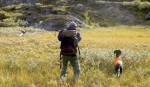 Lottning av ripjakt i Jämtlands län